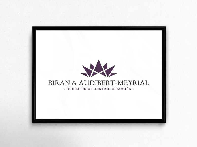 SCP_Biran_audibert-meyrial_logotype_deltroy